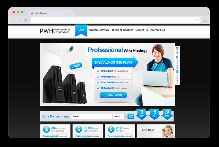Professional Web Hosting Theme